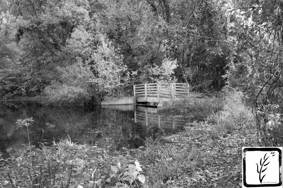 """Little Bridge,"" Lloyd Harbor, New York, 2016."