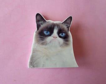 Brooch cat Grumpy cat ♥ ♥