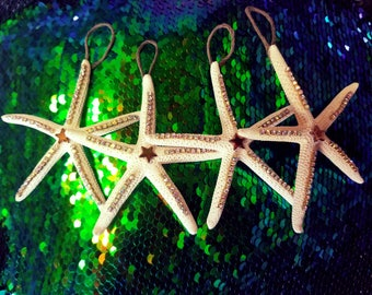 Starfish Ornaments Christmas Holidays