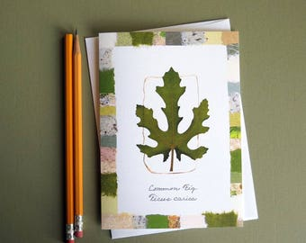 Common Fig leaf card, pressed leaf art card, all purpose card, nature lover card, Ficus Fig botanical greeting card no.1131