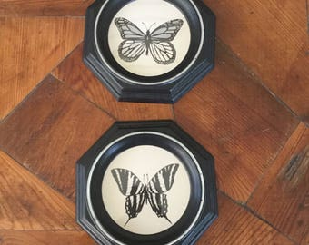 Pair of Vintage Butterfly Pictures, Black and Silver Octagon Frames, 70s Decor, Vintage Framed Pictures