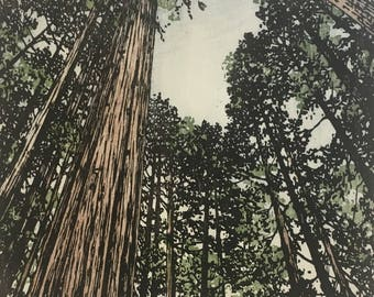 Woodblock Print - Forest No. 10  V. II Moku Hanga Limited Edition Hand Pulled Fine Art Block Print