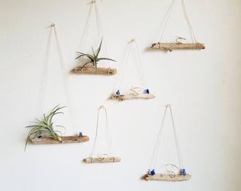 Driftwood Air Plant Holder, Small Airplant Hanger, Natural Boho Decor, Summer Decor, Beach House Wall Decor, Gardening Gift, Ready To Ship