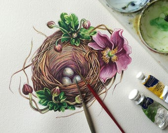 Watercolour nest with flowers
