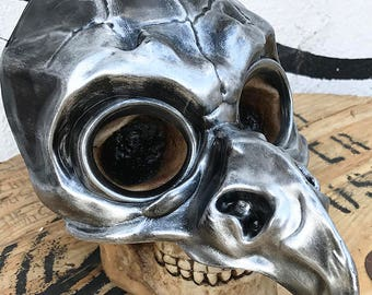 Silver Pewter PLAGUE DOCTOR 'BIRD' Mask Steampunk Festival Masquerade Burning Man Mask A Burning Man Must Have
