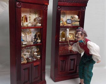 DollHouse Miniature Pair Darwin Museum Natural History Cabinets Units