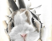 Here is a bunny looking at you! Original art watercolor painting by Helga McLeod