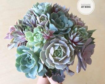 Succulent Wedding Selection, bridal bouquet, 2 succulent crowns adult & child, 2 boutonniers, succulents to trim the cake!
