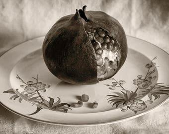 Pomegranate, 8x10 black & white fine art photograph, nature
