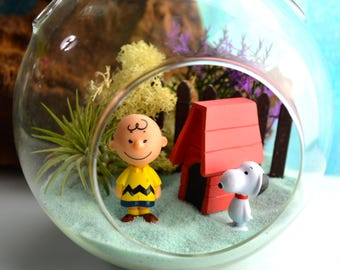Peanuts Characters Terrarium Kit - Medium Air Plant Terrarium Kit ~ Home Decor ~Charley Brown Figures ~ Charlie Brown and Snoopy ~ Gift