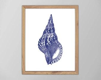 Sea Shell Print, Marine Life, SeaShell Print, Minimalist Art, Navy Blue, Seashell Art Print, Nautical Art Prints, Beach Decor, Nautical Art