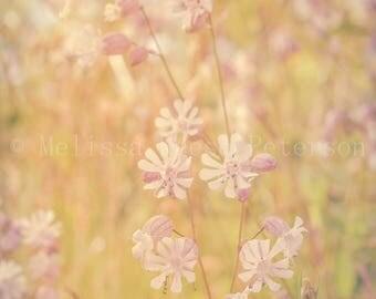 Sweet Little Flowers, Nature Photography, Fine Art Print, Soft Pastels, Flower Photograph, Floral Image, Meadow Home Decor, Nursery Wall Art