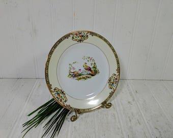 """Bread or Dessert Plate in Noritake Morimura Chelsea Pattern Dinnerware Small Individual Fine China Bread / Dessert 6 1/2"""" Plate 12 Available"""