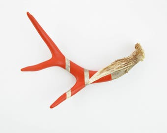 Painted Antler - SMALL - Red Orange Monochromatic - Taxidermy and Curiosities