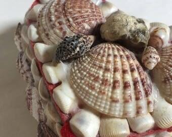 Charming Little Heart-Shaped Seashell Box