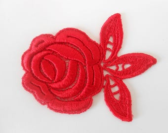 red rose for your creations