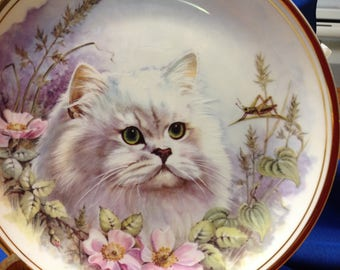 Vintage Royal Kent Bone China Persian Cat Plate Made In Staffordshire England