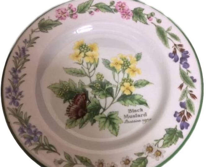 Royal Worcester Herbs Bread, Porcelain Plate, Set of 2, Black Mustard, China Dishes, Green Trim