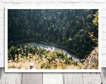Aerial Print, River Print, Forest Print, Aerial Photo Print, Nature Printable Wall Art, Digital Print, Digital Download, Landscape Print