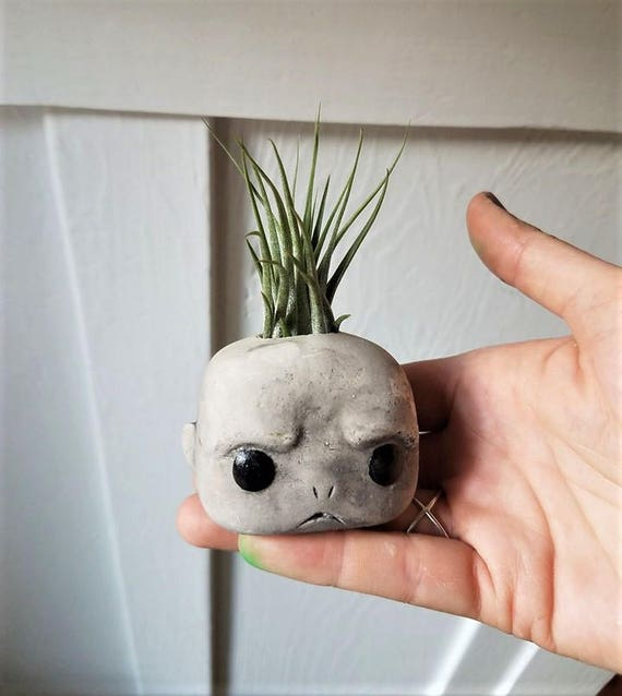 Voldemort inspired planter, air plant gift set, air plant holder, geeky gift, villain gift