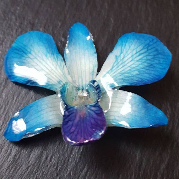 Real whole Dendrobium lucy orchid flower necklace blue
