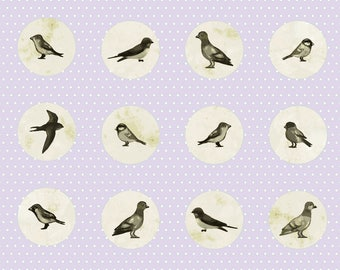 Vintage Look Sparrow Fabric - Retro FREE SHIPPING!