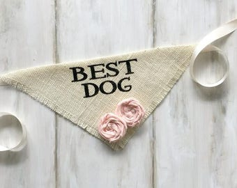 Small READY TO SHIP Ivory Best Dog Bandana with Fabric Flowers Wedding Collar Flowers Engagement Save the Date Photo Prop