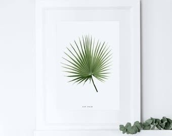 Fan Palm Print, Tropical Leaf Print, Botanical Print, Home Decor, Housewarming Gift, Crazy Plant Lady, Moving Present Gift