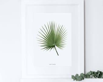 Fan Palm Print, Tropical Leaf Print, Botanical Print, Home Decor, Housewarming Gift, Crazy Plant Lady, Moving Present Gift