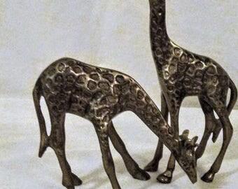 Brass Giraffes