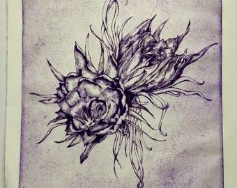 Night Flowering Cereus Print