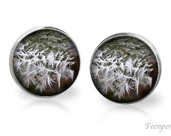 Stud Earrings Frosted 17