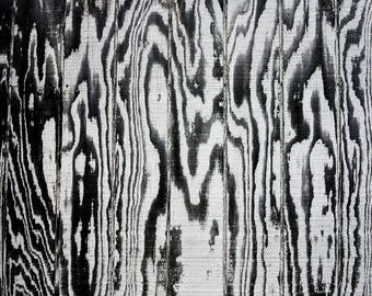 "Photography of Zebra Wood, Weathered Wood Photograph,California, Abstract, High Contrast Fine Art Print, Wall Art Decor, Cool,  ""Zebra Wood"""