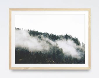 Forest print, Modern printable photography, Digital prints, Forest photography, Mountain print, Digital download, Forest photo, Nature print
