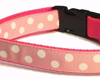 Dog Collar, Dots on Medium