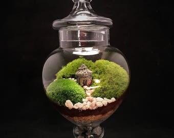 Landscape Terrarium, Moss Terrarium, Terrarium, Zen Terrarium, Cottage Terrarium, Housewarming Gift, Glass Terrarium, Indoor Garden, Cottage