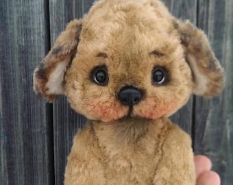 Dog teddy