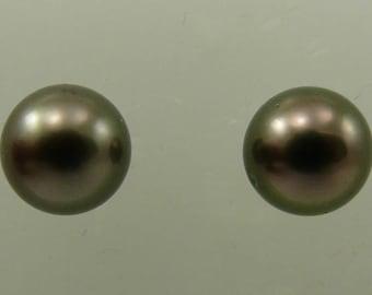 Tahitian Black 9.2 mm Pearl Earrings 14k White Gold