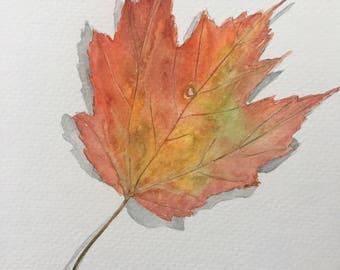 Autumn Maple Leaf Original Watercolor