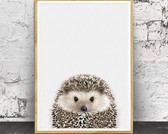 Hedgehog Print, Baby Animal Prints, Baby Decor, Baby Wall Art, Baby Room Decor, Animal Prints, Animal Art, Nursery Animal Print, Wall Art