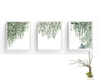 Set Of 3 Prints Watercolor Hanging Plant,Pearl Plant Print.Botanical Print,Poster Green Leaves ,Art for instant Download