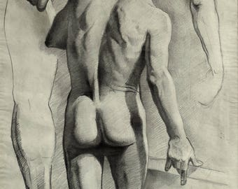 study of male nude drawing in pencil on paper