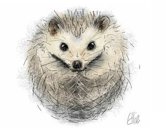 Mounted hedgehog print // hedgehog print // hedgehog gift // hedgehog lover // cute hedgehog gift // hedgehog home decor // hedgehog nursery
