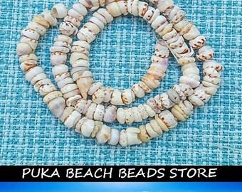 "PUKA SHELL BEADS - 6-7mm multi-color/multi-mix - 15"" length strand"