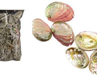 Red Abalone Sacred Sage Smudge Kit