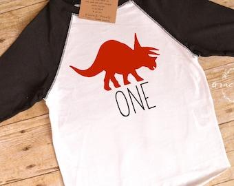 Dinosaur Birthday, 1st Birthday Shirt, Dinosaur Shirt, Raglan, One, First Birthday, Dinosaur Party, Birthday Shirt, Boy's Clothing, Custom