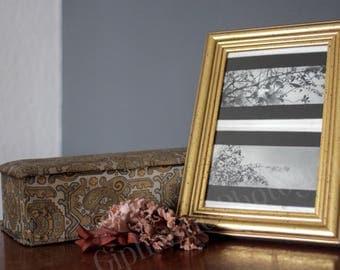 Tiny Petals Photography Print Set