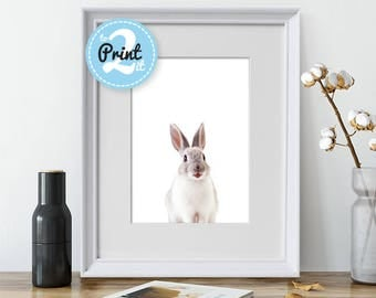 Kids Bedroom Prints - Rabbit print - Cute rabbit - Animal Prints - Digital Rabbit Print - Rabbit Wall Decor - Animal Poster - Animal Print