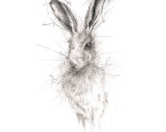 Limited Edition Giclee Hare Art Print