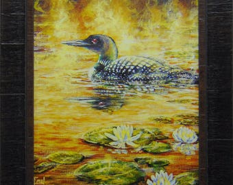 July's Jewels - Loon/waterlilies.  Loons, Northwoods, Up North, lakes, summer, wildlife